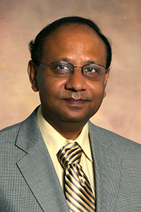 Partha Sarkar, professor of aerospace engineering