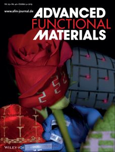 An image of the cover of Advanced Functional Materials. The image on the cover shows a rose with geometric patterns on it.