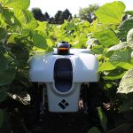 Vision for ultra-precision agriculture includes machine-learning enabled sensing, modeling, robots tending crops